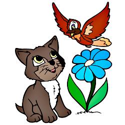 Раскраска Кот и птица